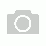 Empty Nail Tip Box (Clear White)